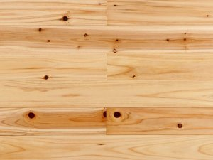 杉木 木地板效果图