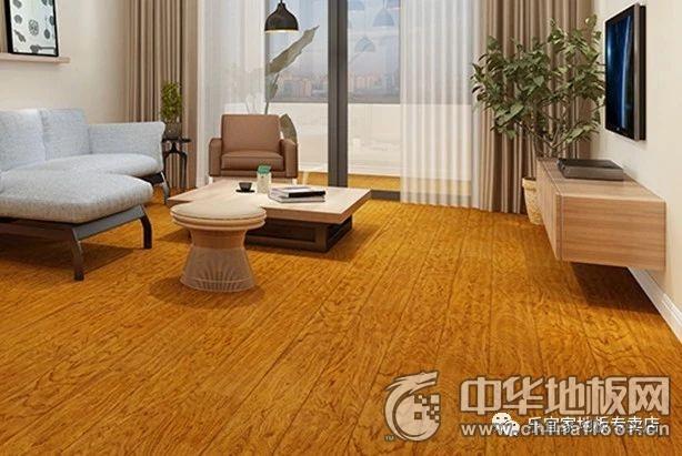 乐宜家地板  实木地板风格装修效果图
