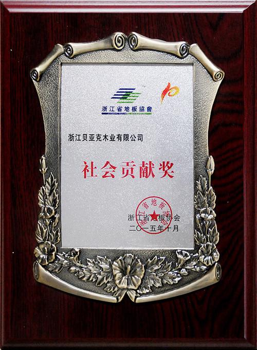 2015-社会贡献奖