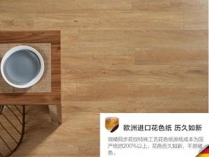 菲林格尔地板耐磨防潮复合强化地板图片 Y489