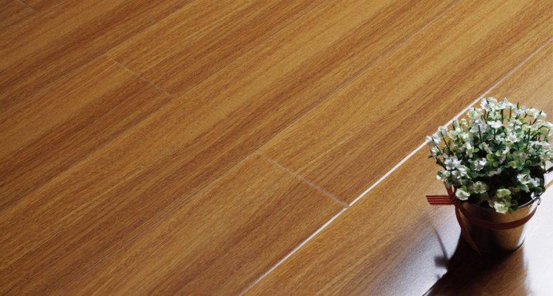 傲美地板图片 强化木地板装修效果图