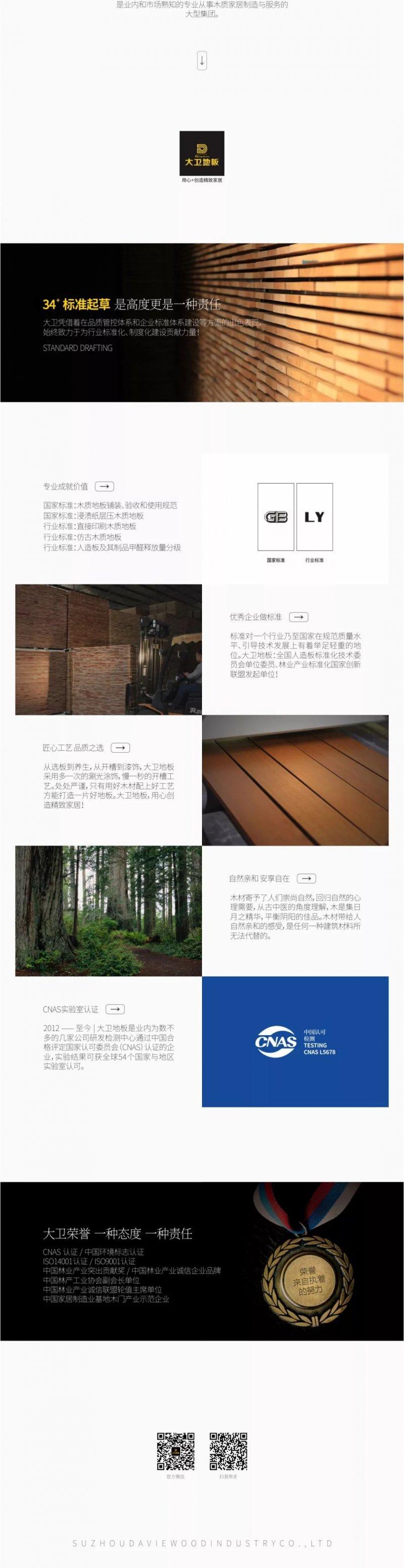 大卫地板产品-木 · 物语 NO.197 - DW0091 倾城如梦
