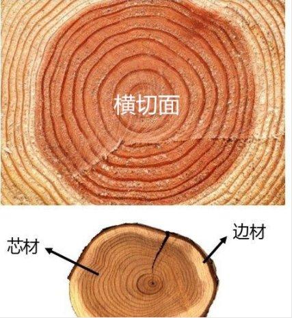 造成木地板颜色差别主要原因有哪些?_1