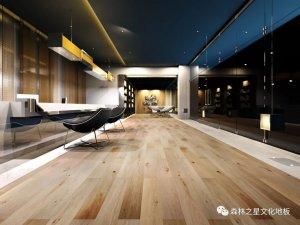 森林之星文化地板图片 家居地板装修效果图