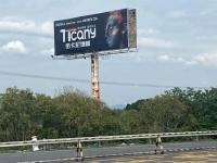帝卡尼 丨 高炮广告密集投放,深化品牌传播,全面打响品牌建设战役