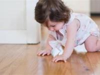 欧米加地板与品牌之家加深战略合作!
