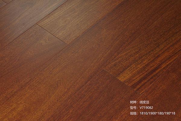 子标题:阔变豆-V719082